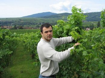Lucas Reiffel at his vineyard in Alsace