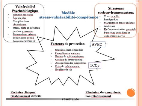 Tania Lecomte AVEC_tcc - diapo 3