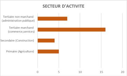 Secteur d'activité - IPS