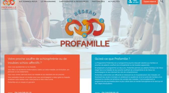 Site web du réseau Profamille en ligne