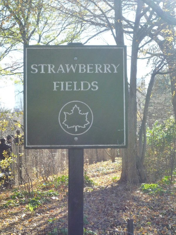 Strawberry Fields, Central Park | Shades of Sarah