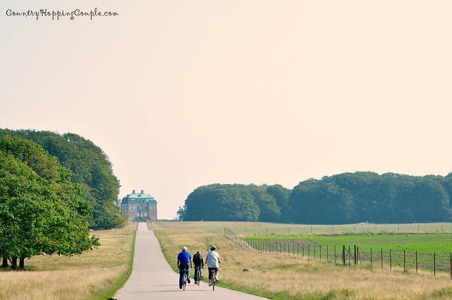Denmark Landscape 1