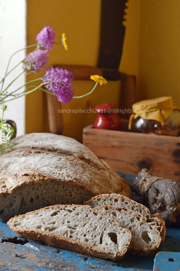 pane grano arso DSC_9221