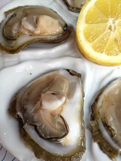 Le ostriche di Ston, le più buone del mondo