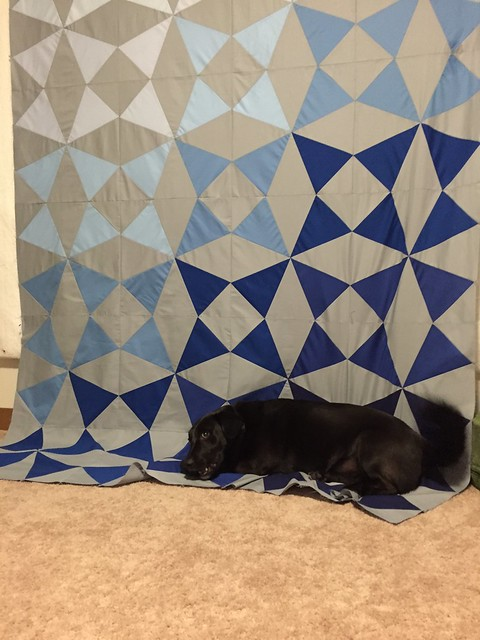 Quilt Top Inspection
