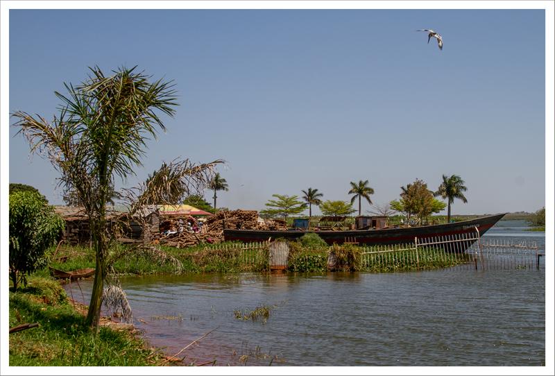 Kampala y Entebbe-57