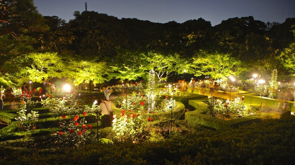 Crowds at Kyu Furukawa Gardens