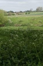 ouzel valley park 1