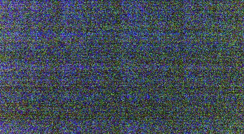 Blue Ghost Fireflies-1