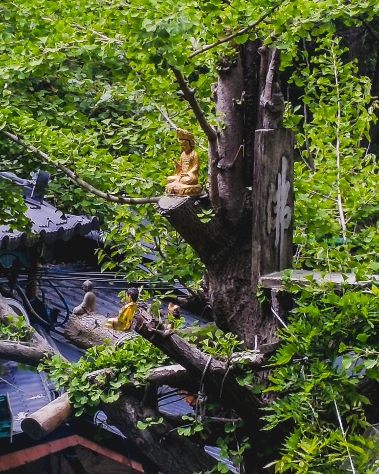 daegu // apsan temple hike