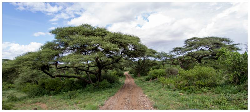 Tanzania-25