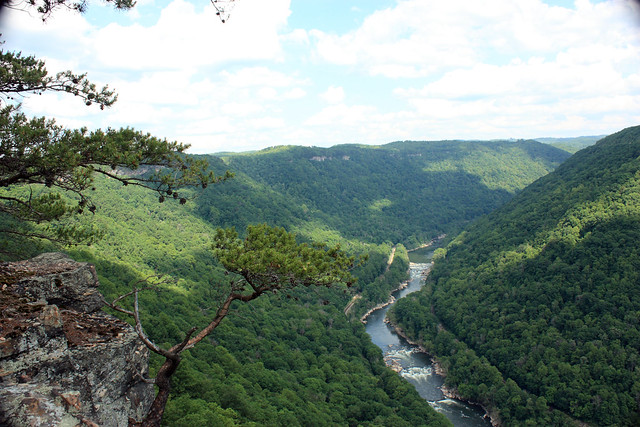 20150530_New_River_Gorge_050