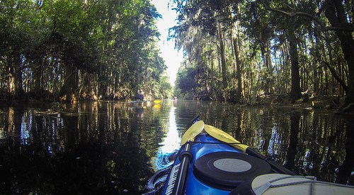 Lowcountry Unfiltered at Okefenokee-138