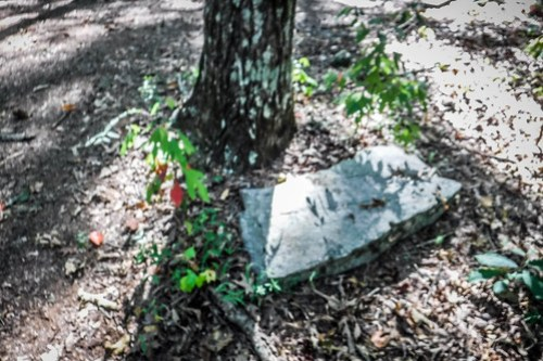 Harrisburg Plantation Cemetery-013