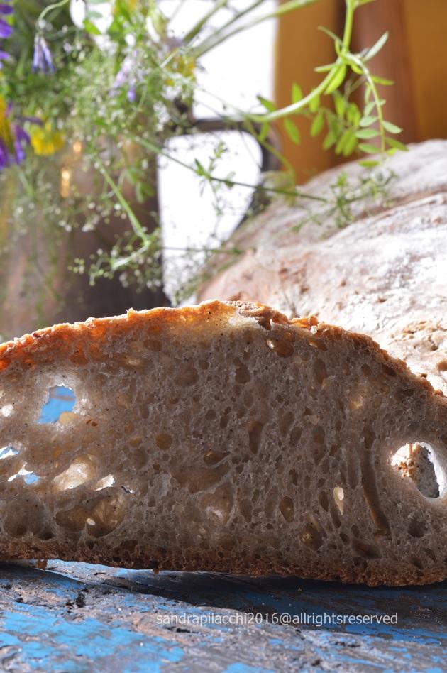 pane grano arso DSC_9241