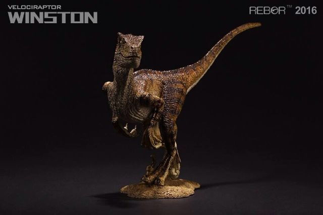 04 Raptor Rebor 2016 'Winston'