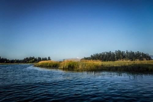 La Conner Kayaking-41