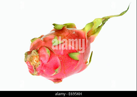 Pitahaya or Dragonfruit (Hylocereus undatus), fruit - Stock Photo