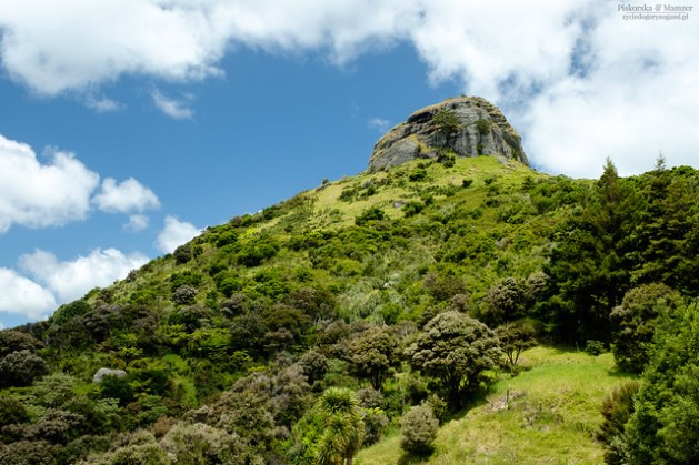 Nowa Zelandia - Rezerwat St Pauls