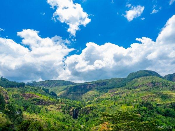 The View from Tea Bush - Ramboda, Sri Lanka.jpg