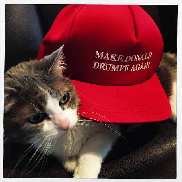 Pope Doesn't Want to Wear Her Make Donald Drumpf Again Hat for some reason