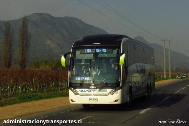 Buses Tacoha | Carretera de la Fruta | Neobus New Road N10 380 - Scania / HSTP73 - 166