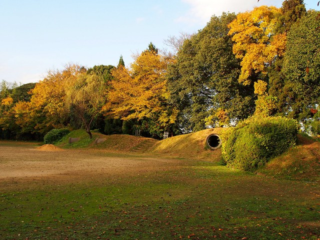 Fall colors in Takano Park