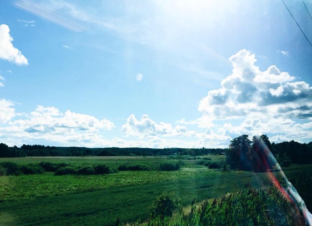 sweden nature summer