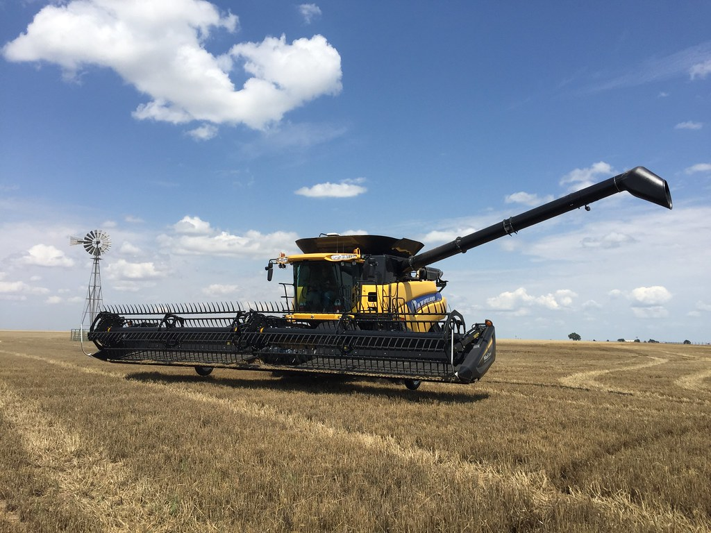 Z Crew: This is what it looks like when you're cutting wheat.