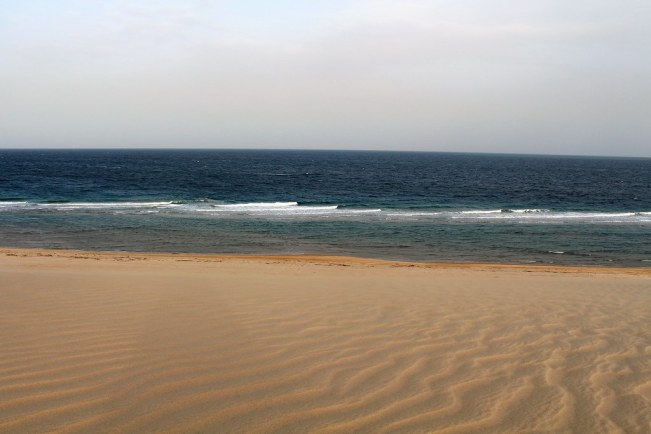Sealine Desert Sea Side