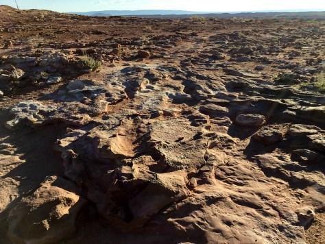 Tuba City Dinosaur Footprints