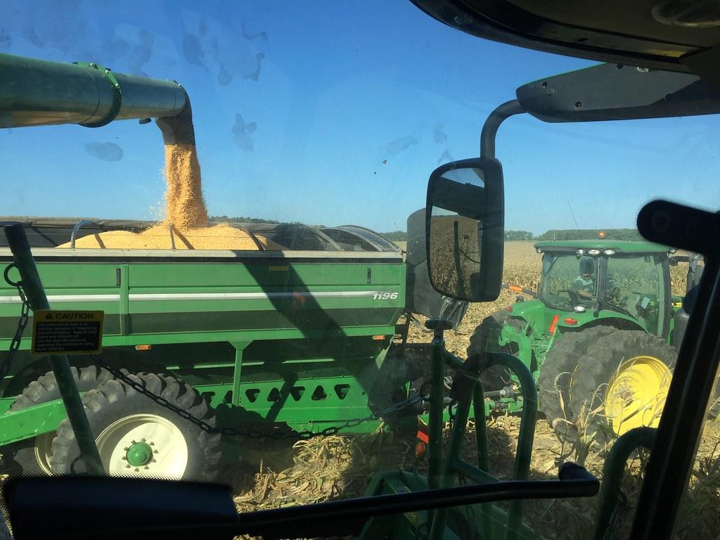 HPH-2016-Corn Harvest (Pieter)