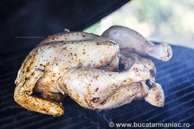 pulled chicken3