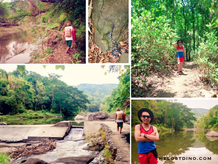 hiking to tangadan falls