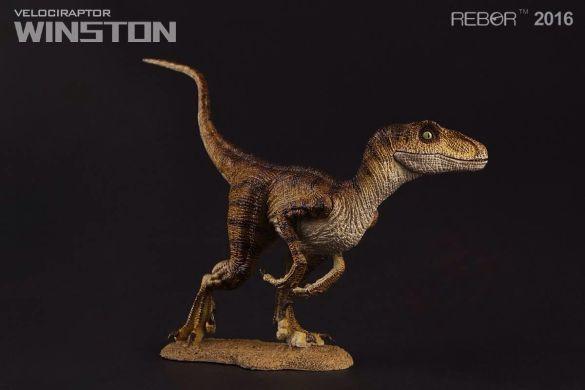 05 Raptor Rebor 2016 'Winston'