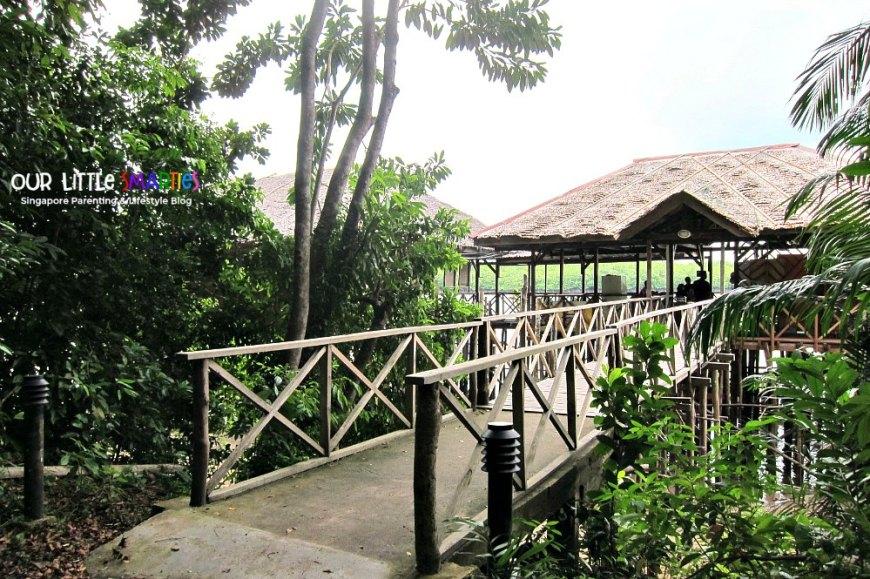Bintan Mangrove 2