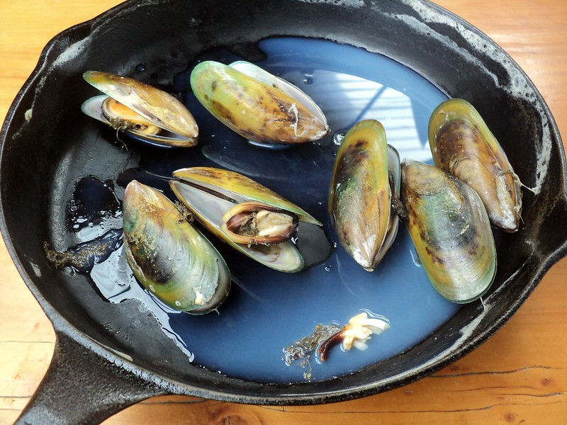 mussels, New Zealand - the tea break project solo female travel blog