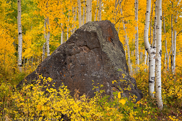 Colorful Boulder