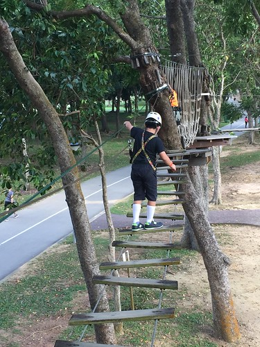 Singapore - Luge and Forest Adventure