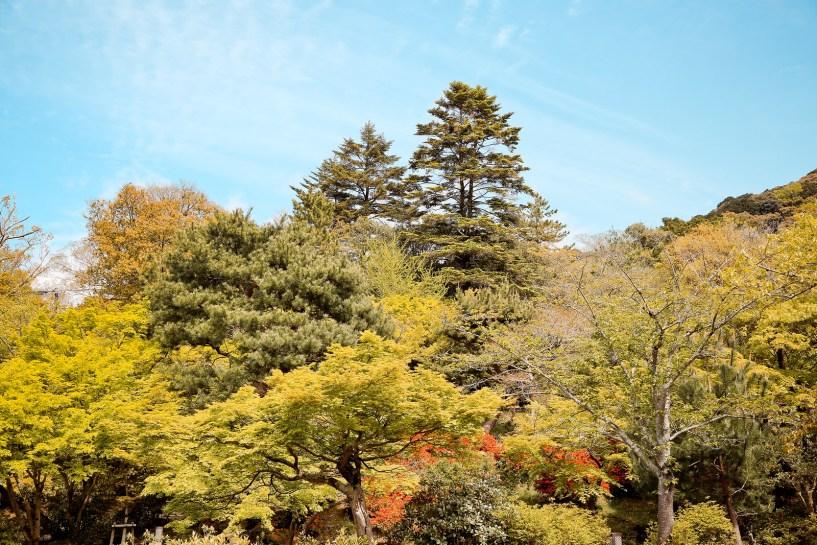 2015 April Kansai 259