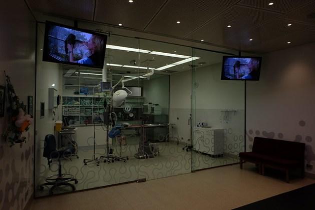 Laboratorium weterynaryjne