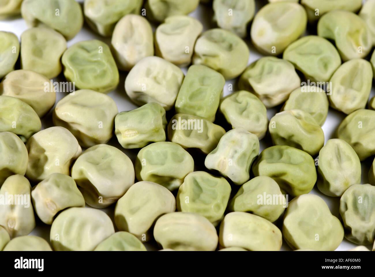 Green Wrinkled Pea Seeds Traits Gregor Mendel Stu D In