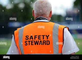 Image result for Safety Steward