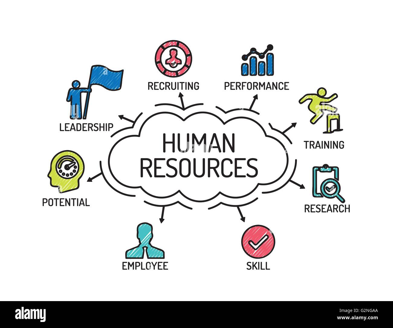 Human Resources Chart With Keywords And Icons Sketch