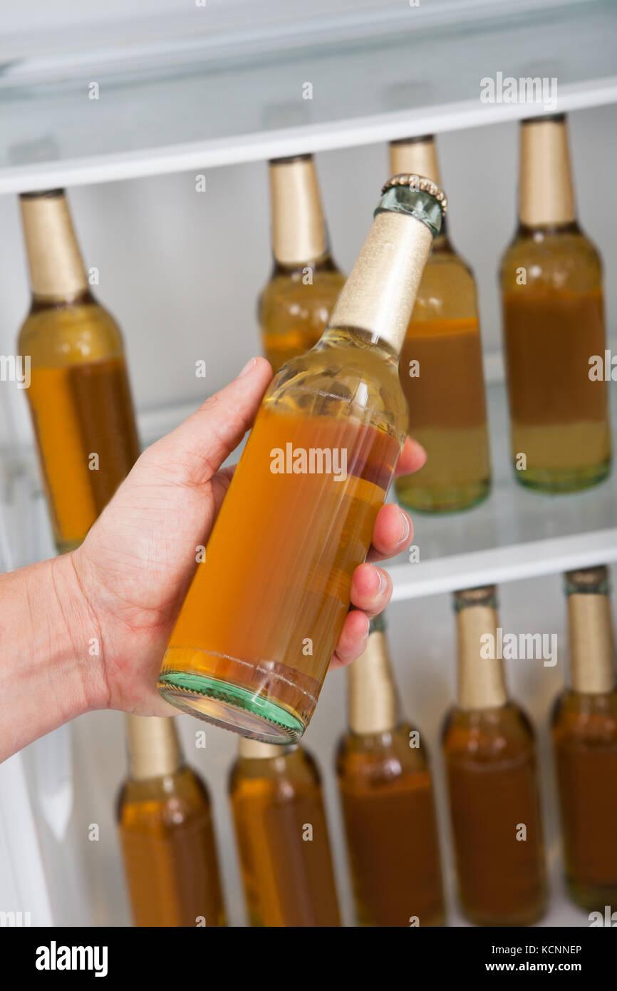 Budweiser Beer Refrigerator Mini Fridge Wiring Diagram