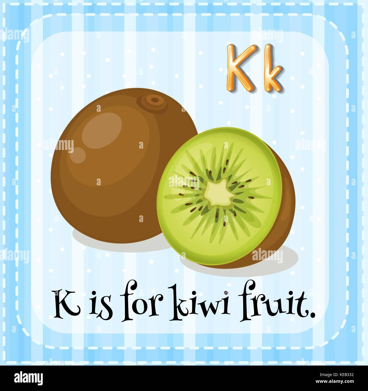 Kiwi Fruit Stock Vector Images