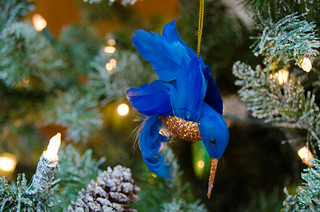 Wright Christmas Ornaments-001