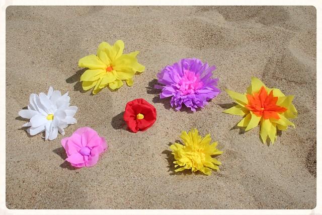 Soorten strandbloemen overview (2)