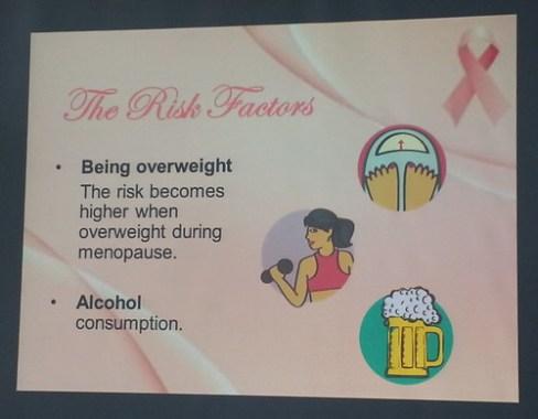 3-Risk Factors 3