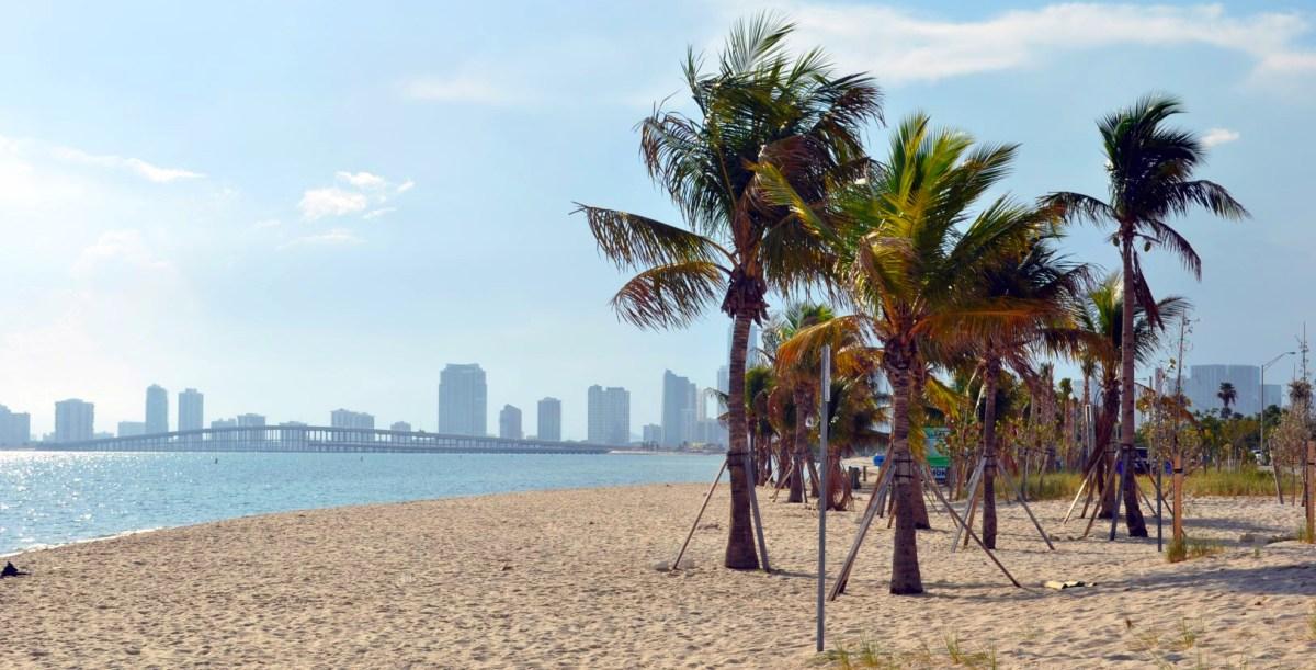 Qué hacer y ver en Miami, Florida qué hacer y ver en miami - 31012053710 592dba416b o - Qué hacer y ver en Miami